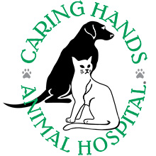 Caring Hands Animal Hospital – Contest